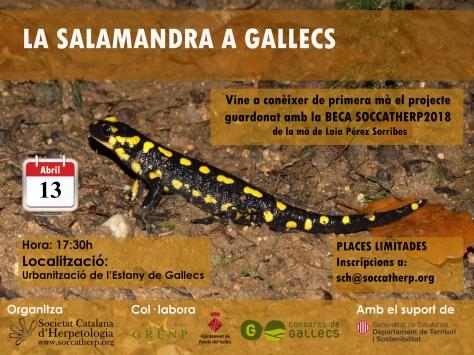 https://soccatherp.files.wordpress.com/2019/03/2019_04_13_salamandres-gallecs_hb-1.jpg?w=474