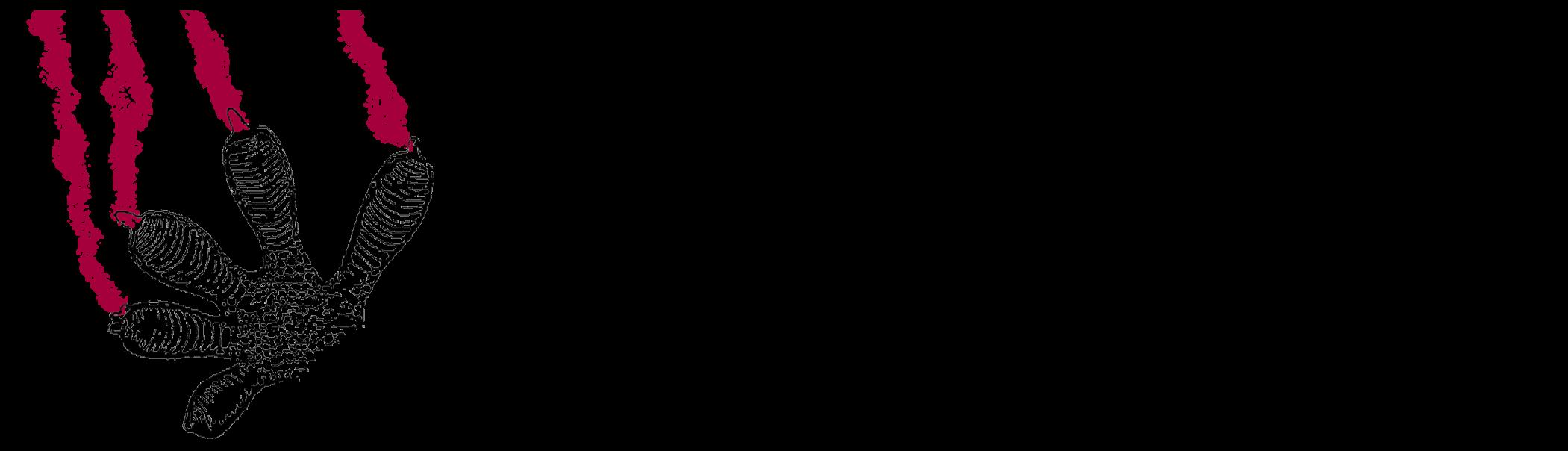 Societat Catalana d'Herpetologia