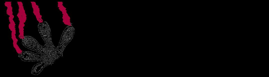 https://soccatherp.files.wordpress.com/2019/11/cropped-logorect_v2_logopetit-copia-7.png?w=1080&h=310